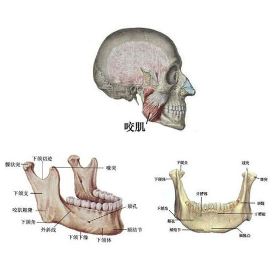 智齿冠周冲洗步骤图