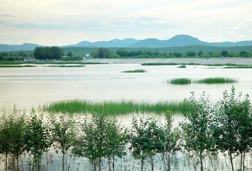 突泉县旅游景点