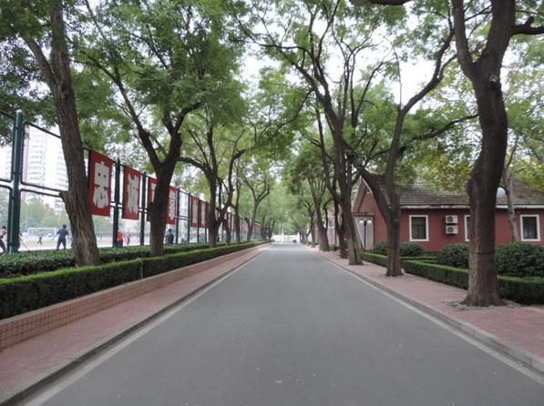 中國城市街道背景素材