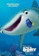 德斯蒂妮(鲸鲨)演员凯特琳·奥尔森