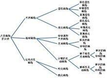 大豆磷脂分类