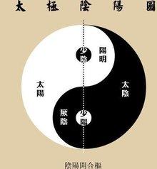 中医阴阳理论