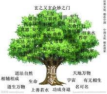 中华文化之根