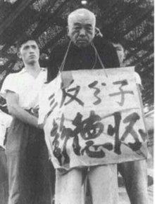 文化大革命 批斗运动