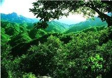 龙天沟自然风景区