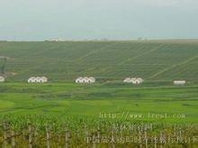 红河哈尼族彝族自治州