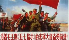 文化大革命