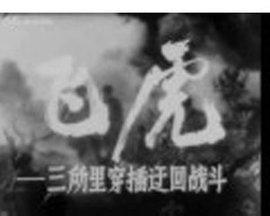 飞虎 DVD