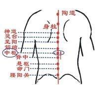 中枢 - 汉语词语  免费编辑   修改义项名