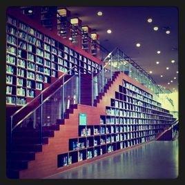 浦东图书馆开放时间_浦东图书馆_360百科