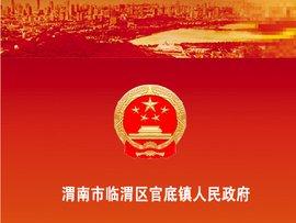 洮南市人民政府官网_渭南市人民政府网站_360百科