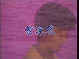 紫浣花简谱_儿歌简谱