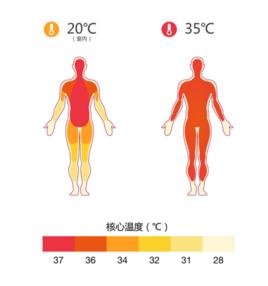 人体体温范围_体表温度_360百科