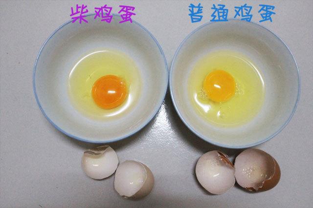 柴鸡蛋_柴鸡蛋_360百科