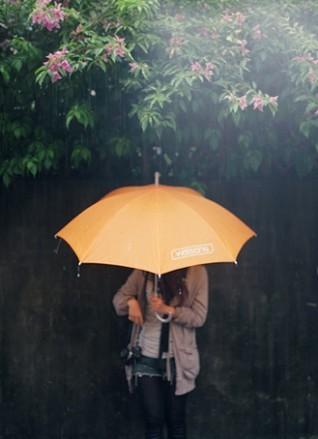 一个女人拿一把伞_雨伞_360百科