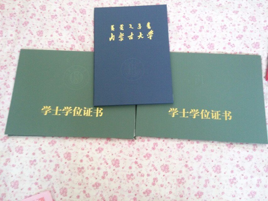 内蒙古自治区财政厅_内蒙古大学满洲里学院_360百科